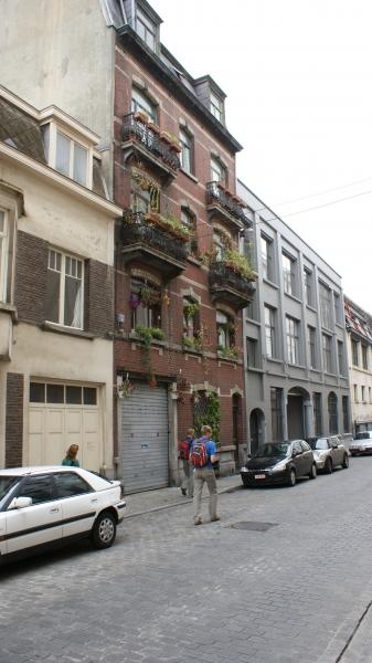 image: Zielona Bruksela...