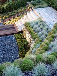 image: Trawy nie na trawnik...