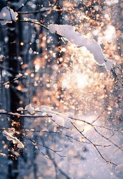 image: Śnieg już jest. Co teraz?...